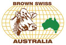 Brown Swiss Australia - Cattle Breaders